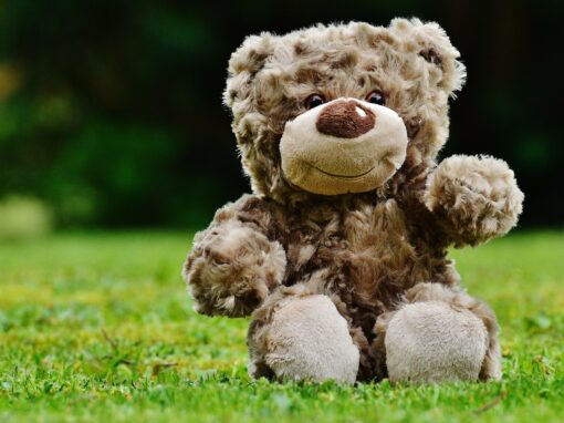 """Spielgruppe """"Teddyclub"""" hat wieder freie Plätze"""